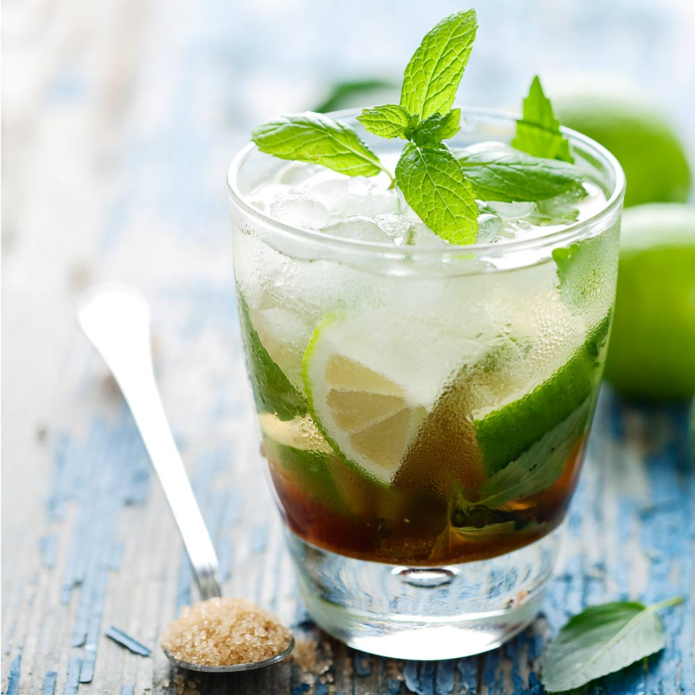 Mint Mojito Fragrance Oil Candlescience