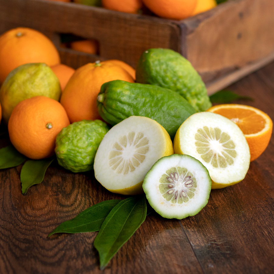 Citron and Mandarin Fragrance Oil