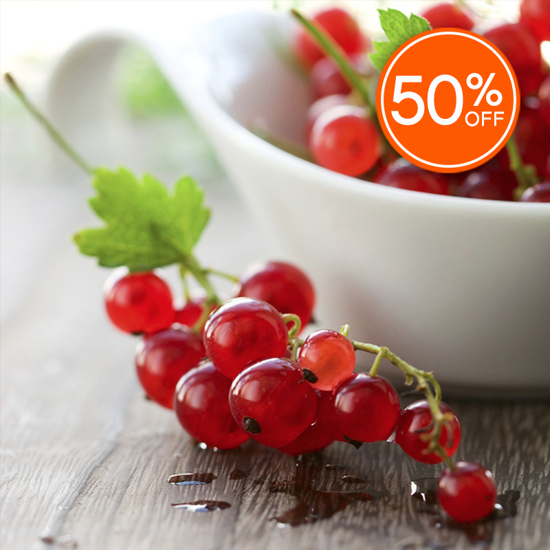 Red currant 50  off