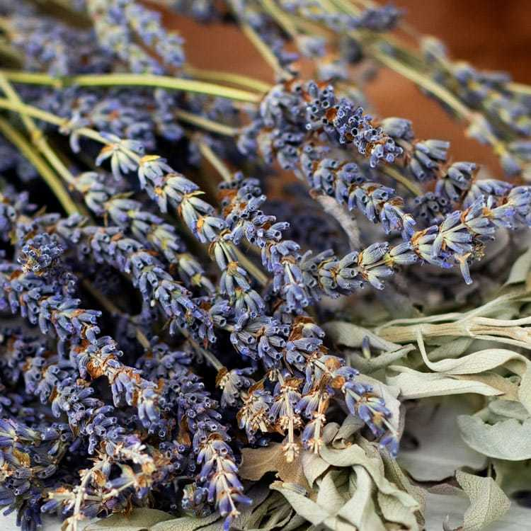 White Sage and Lavender Fragrance Oil