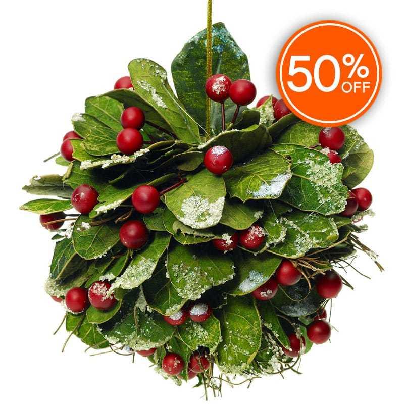 Mistletoe fragrance oil 50