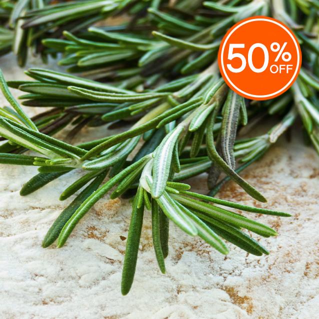 Rosemary fragrance oil 50