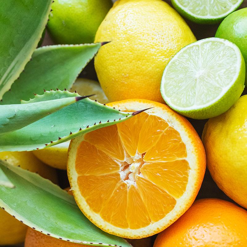 Citrus Agave Fragrance Oil