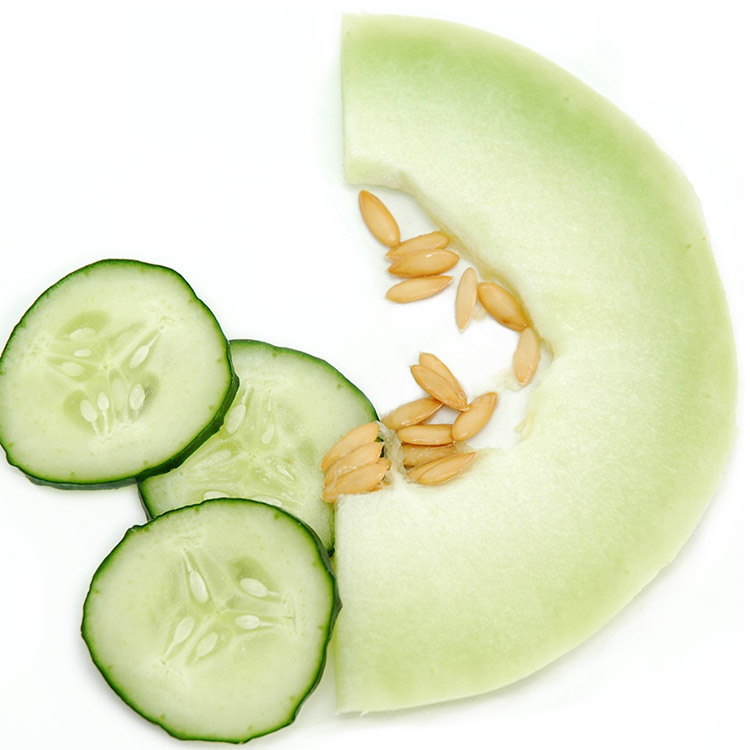 Cucumber Melon (Discontinued)