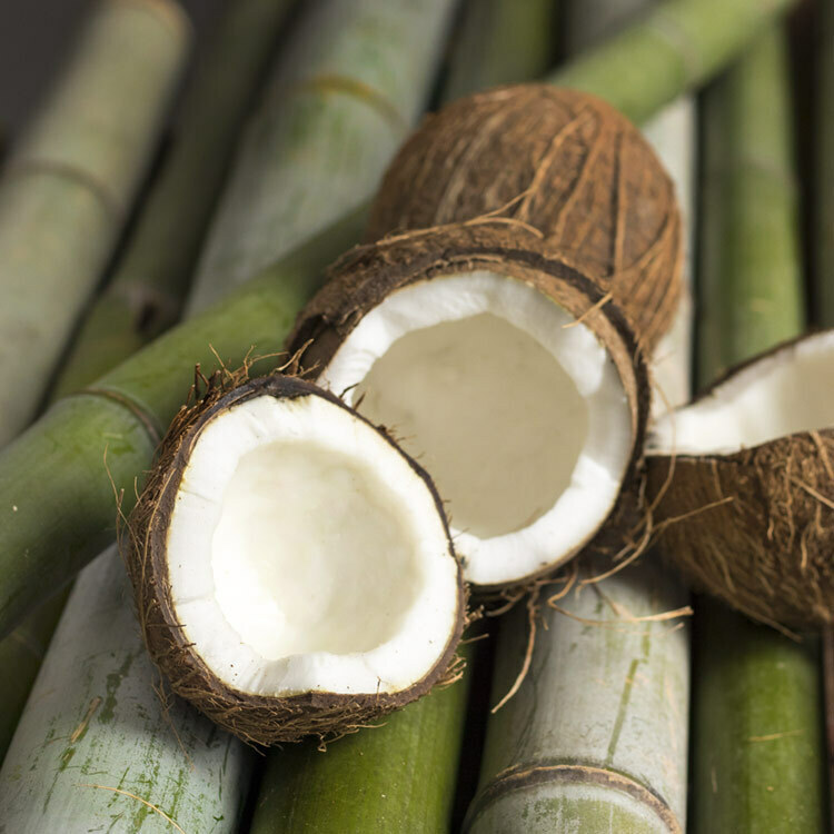Bamboo and Coconut Fragrance Oil