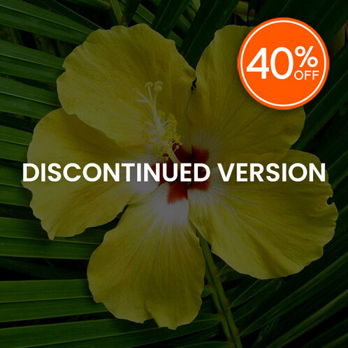 Hibiscus Palm (Discontinued)
