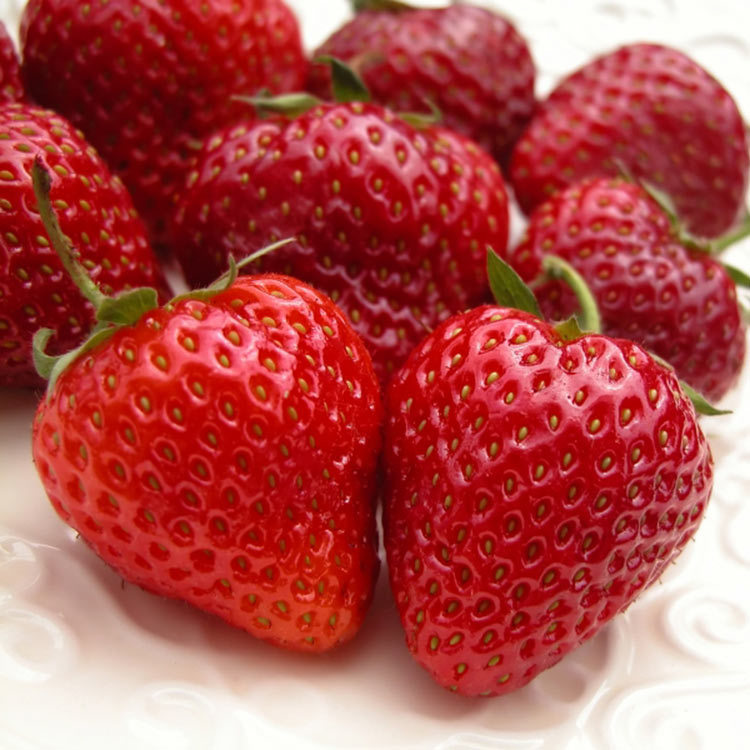 Strawberry 750px